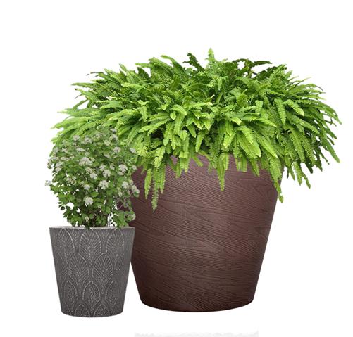 Planters, buy planters online, Artificial Plants, buy artificial Plants
