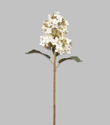 """Hydrangea Cone White 20.5"""""""
