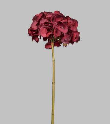 "Hydrangea Red 31.5"""