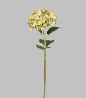 "Hydrangea Green 31.5"""